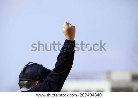 A Strike Call Of Baseball Umpire - stock photo