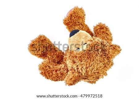 A studio photo of a toy bear