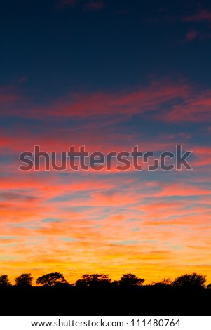 A stunning Kalahari sunrise full of color - stock photo