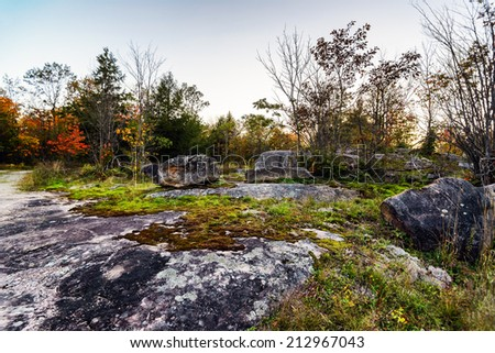 A sunrise in a rocky forest during the autumn season.