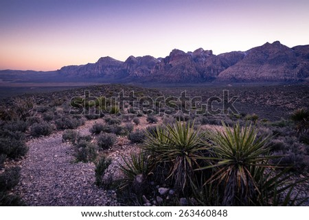 A sunset hike in the desert of Red Rock Canyon in the southwestern United States near Las Vegas.  - stock photo