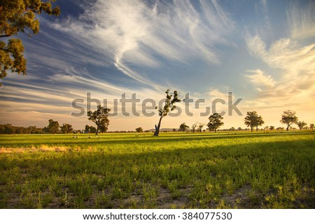 A sunset over outback Australia - stock photo