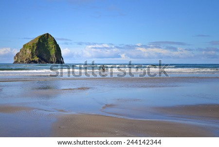 A surfer coming out of the ocean on the Oregon coast. - stock photo