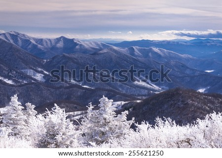 A sweeping view of the snow-covered Blue Ridge Mountains from the round bald at Roan Mountain.  - stock photo