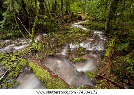 A swift flowing mountain stream winding through the forest. - stock photo