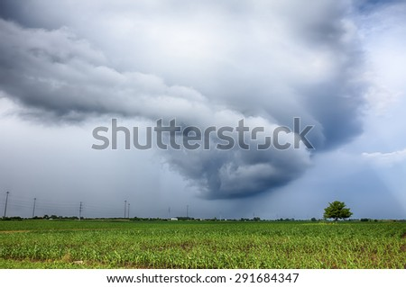 A swirling storm cloud spins in a circle over a corn field in central Illinois.