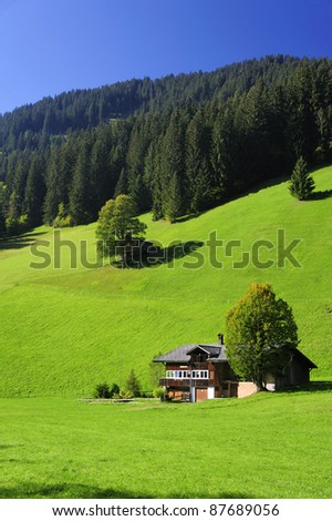 A Swiss farmhouse in verdant green fields. Space for text in the clear blue sky