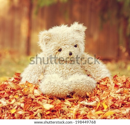 a teddy bear in a pile of leaves done with a retro vintage instagram filter - stock photo