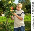 A teenager in the apple orchard with red apples - stock photo
