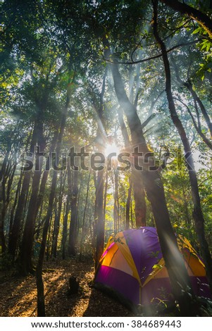 A tent in jungles with smoke and sun rays