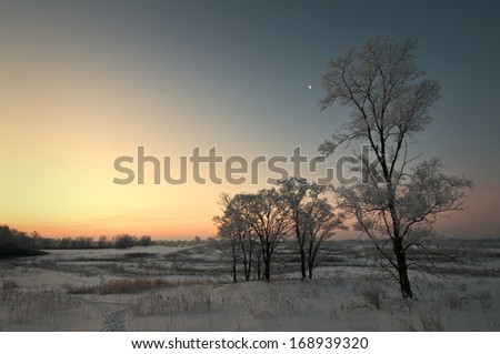 A thick coating of hoar frost covers the winter landscape as the sun rises over Springbrook Prairie Forest Preserve, DuPage County, IL. - stock photo