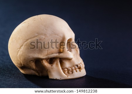 a tiny and dirty skull model made of stone