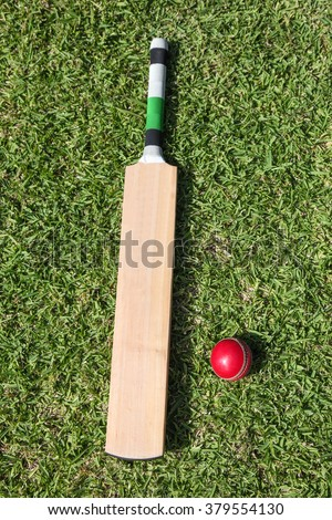 A top view shot of cricket bat and ball on lush green grass. - stock photo