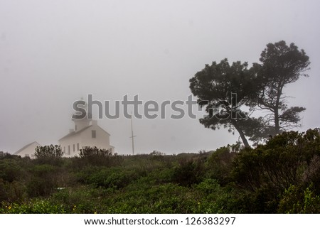 A torrey pine tree and the Old Point Loma Lighthouse in the fog.