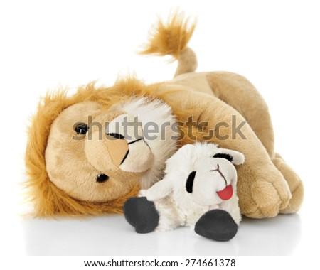 A toy lamb and lion peacefully laying down together.  On a white background. - stock photo