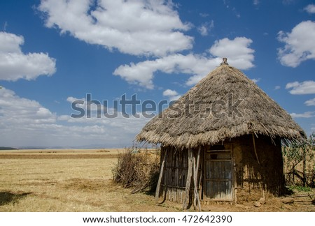 a traditional mud and stick Ethiopian hut with a thatch roof sits in a yellow field with blue sky and white clouds above.
