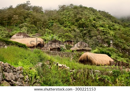 A traditional village in Papua, Indonesia , New Guinea Island