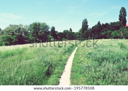 A trail in green field - stock photo