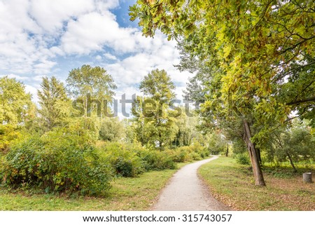 A trail in the park during a late summer afternoon. Soft white clouds flow in the blue sky.