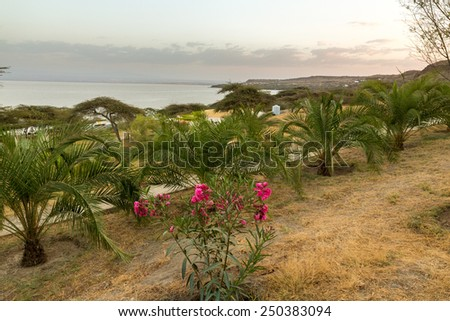 A tranquil, green and peaceful place by shores of lake Langano in Ethiopia - stock photo