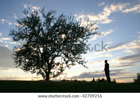 A tree and a lady at sunset