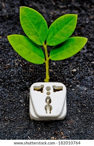a tree growing on a socket / green energy / save the world - stock photo