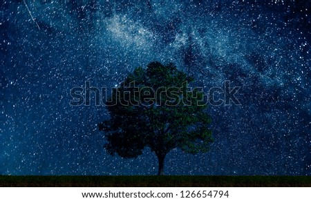 A tree in a field with stars - stock photo