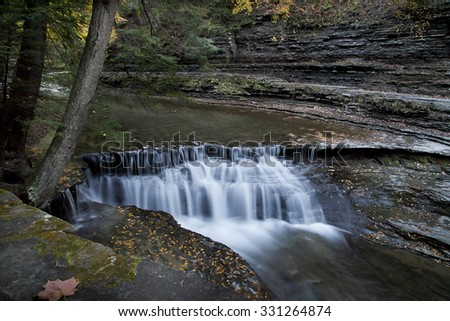 A tree leans over a waterfall at Stony Brook State Park, NY. - stock photo