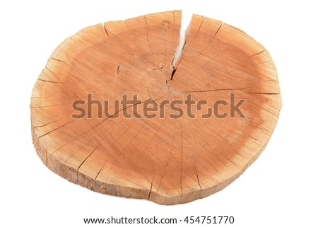 A tree stump on a white background