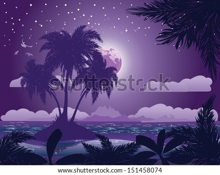 A tropical island at night under starry sky background. - stock photo