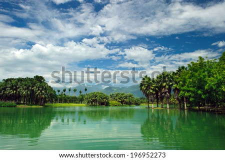 A tropical lake bordered by palm trees and bushes.