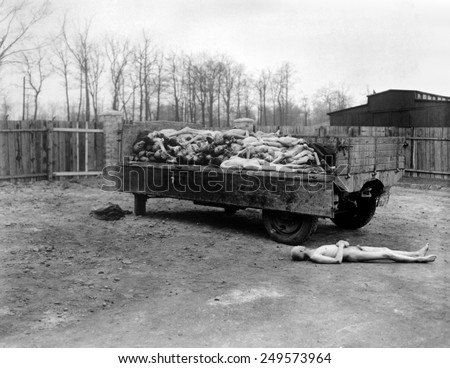 A truck load of bodies of dead prisoners of the Nazis, at Buchenwald concentration camp. April 14, 1945, Germany, World War 2. - stock photo