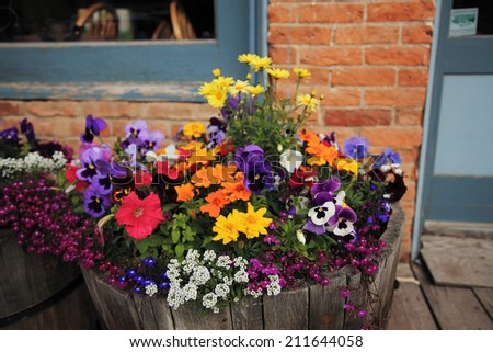 A tub full of flowers adds some color to Lake City Colorado in the summer - stock photo