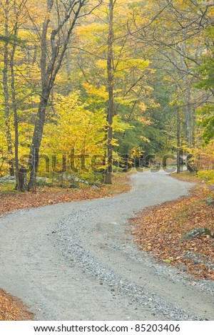 A typical New England, unpaved secondary road during the fall