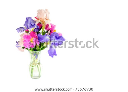 Vase Beautiful Fresh Cut Spring Flowers Stock Photo Royalty Free