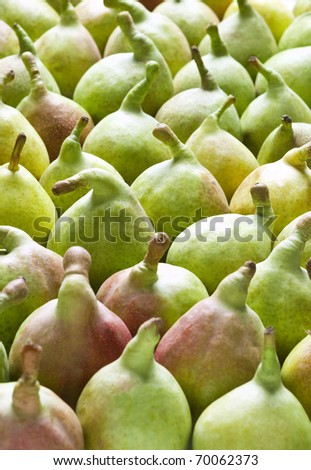 a vertical frame full of pears(greek variety)