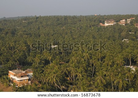 a view from the lighthouse, india, kerala, kovalam