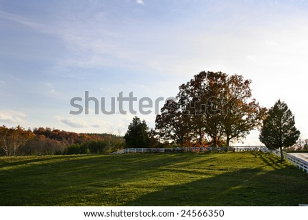 A view of a field at sunset in the fall.