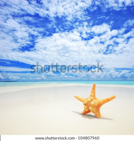 A view of a starfish on a beach, cloudy sky and turquoise sea at Kuredu island, Maldives, Lhaviyani atoll - stock photo
