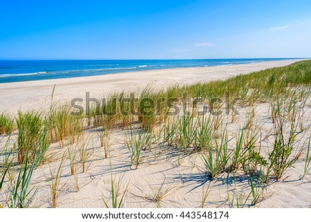 A view of beautiful beach and grass on sand dune at Baltic Sea, Lubiatowo coastal village, Poland
