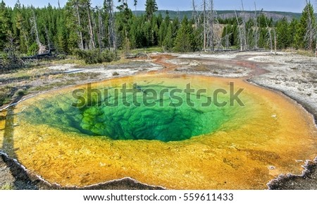 A view of Chromatic Pool at apper Geyser Basin Yellowstone national park