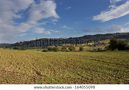A view of cultivated fields of the tuscan country, near Siena, Italy - stock photo