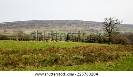 A view of Farndale in the North Yorkshire Moors - stock photo