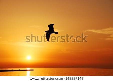 A view of golden sunset by the Adriatic Sea in Trieste, Italy