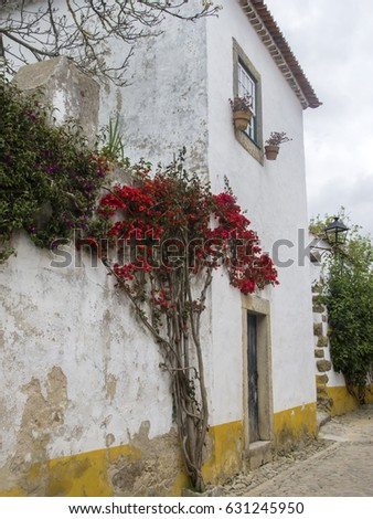 A view of medieval town Obidos in a beautiful summer day, Portugal