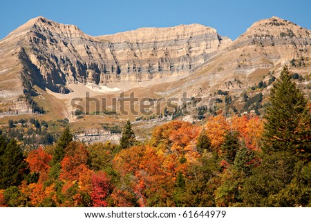 A view of Mt. Timpanogos, Utah, with blue sky and brilliant fall colors. - stock photo