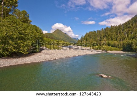 A view of Olympic National park - stock photo