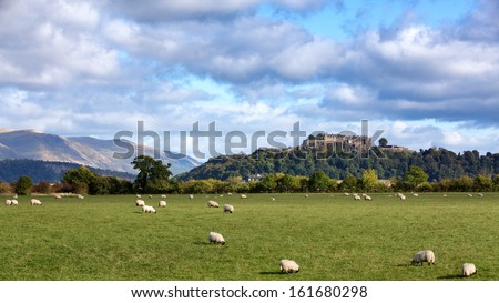 A view of sheep grazing with Stirling Castle in the distance. Stirling, Scotland - stock photo