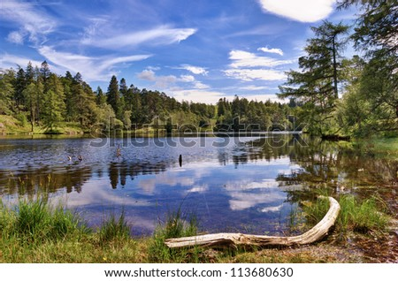 A view of Tarn Hows, a small lake in the English Lake District surrounded by woodland - stock photo