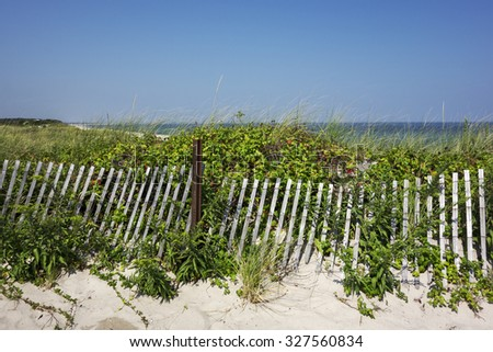 A view of the beach from the protective sand dunes in Cape Cod, Massachusetts. - stock photo